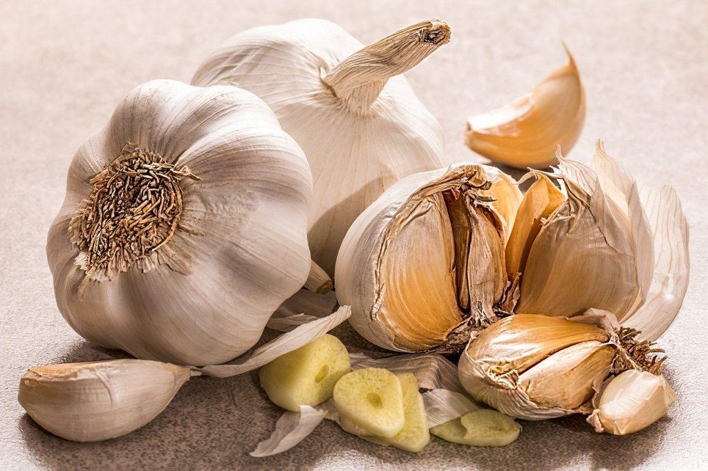 Re-Growing Garlic